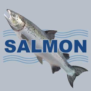Wanted! Bristol Bay salmon setnet permit